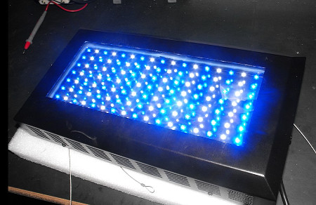 Purchasing LED Lighting